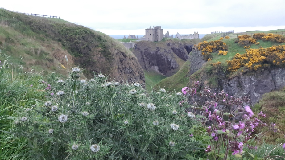 Stonehaven, Dunnotar and St Andrews (The In BetweenTime)